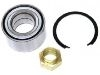 Radlagersatz Wheel bearing kit:5890987